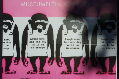 apes_2016-08-06 11.35.03.jpg
